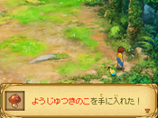 Nino_21