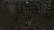Tesv_497_2